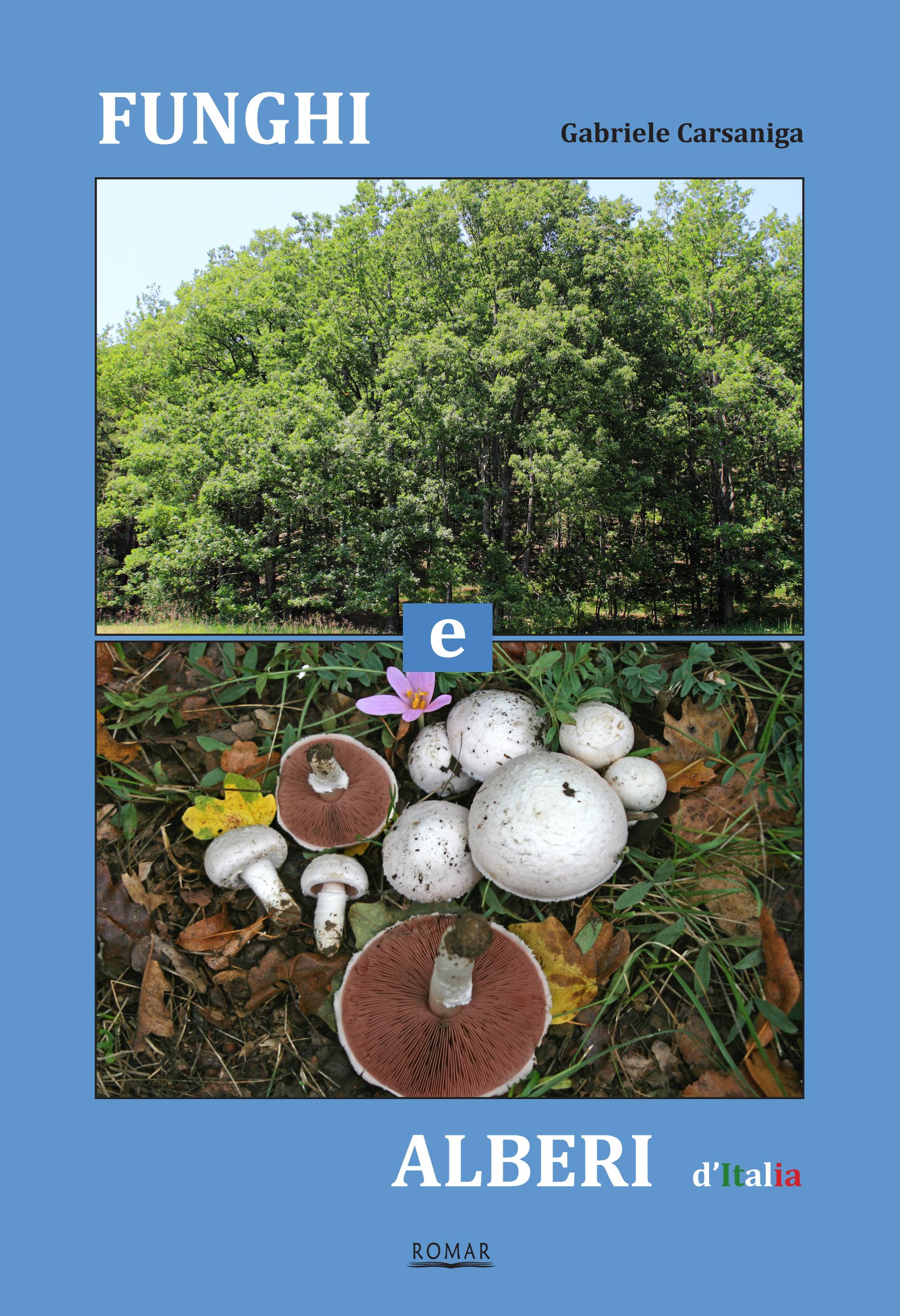 Funghi e alberi ditalia prima di cop